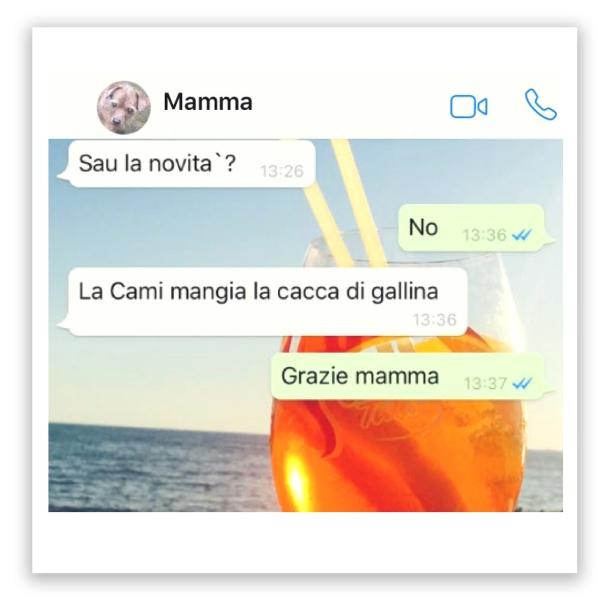 mammapp04