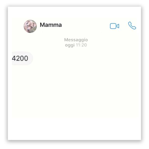 mammapp06